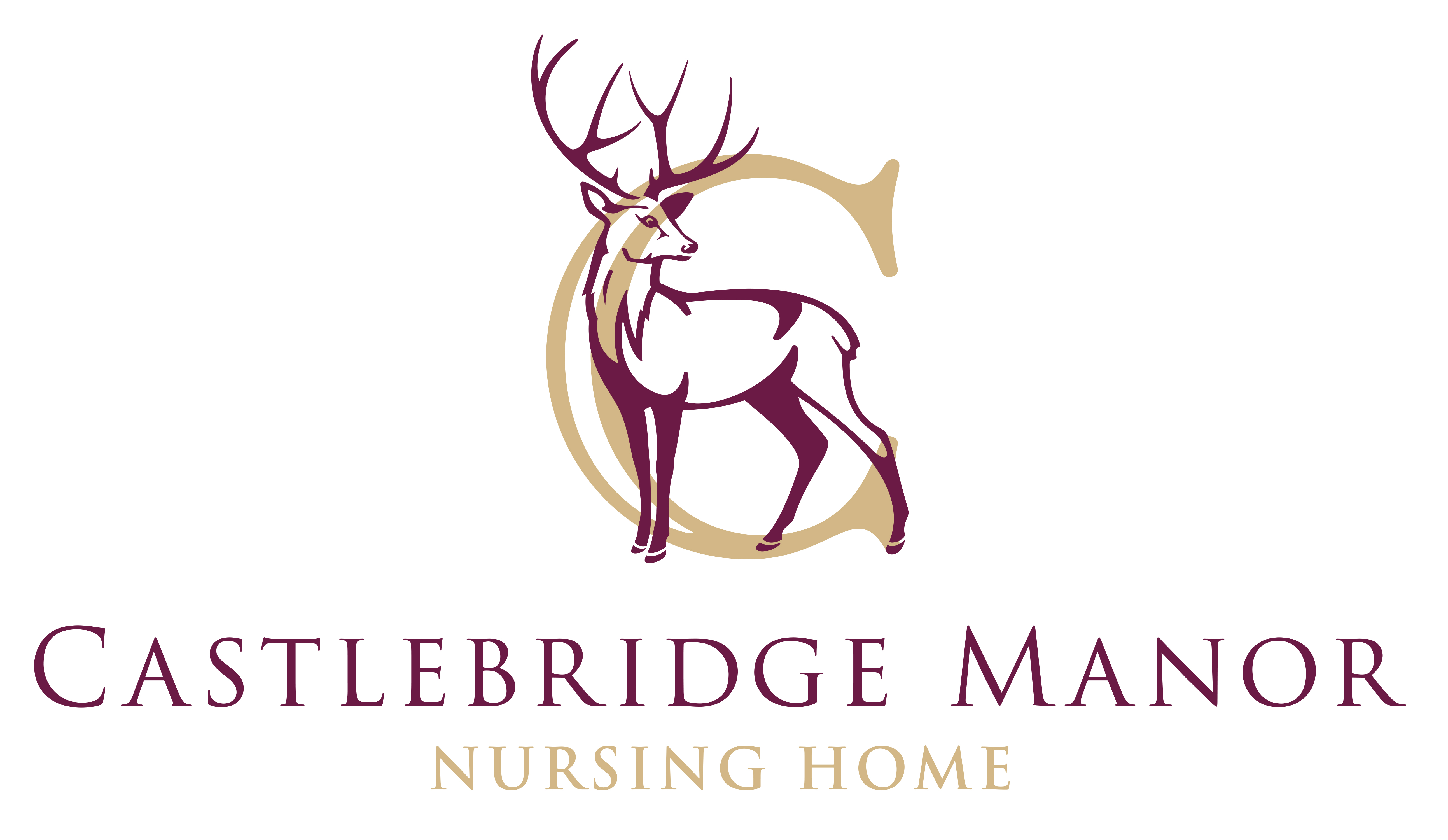 Castlebridge Manor Nursing Home